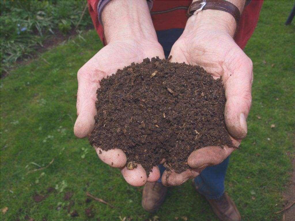 Il compost è un prodotto naturale