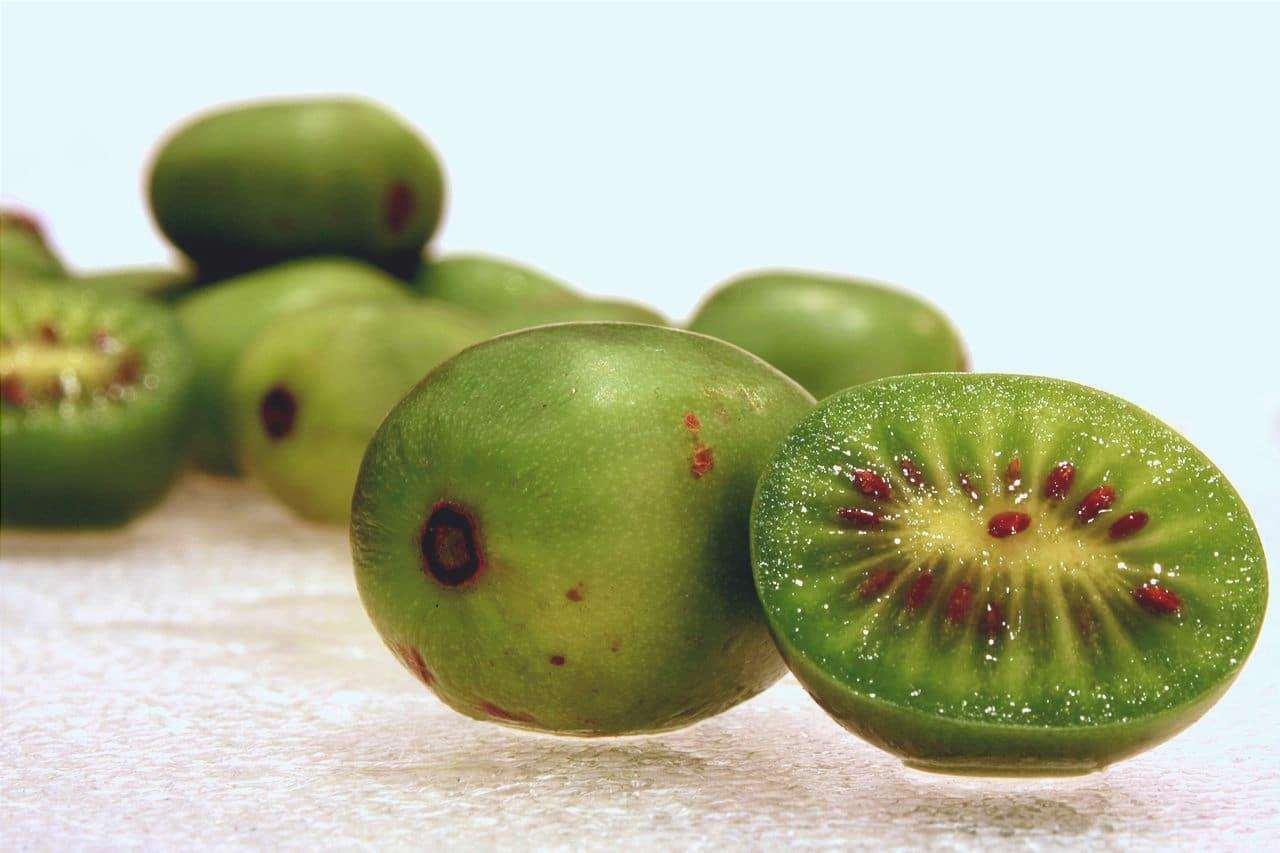 L'Actinidia arguta è una pianta resistente al gelo.