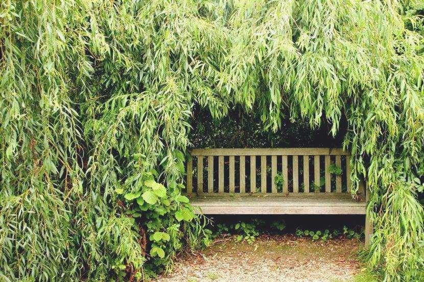 Un angolo nascosto per godersi il giardino
