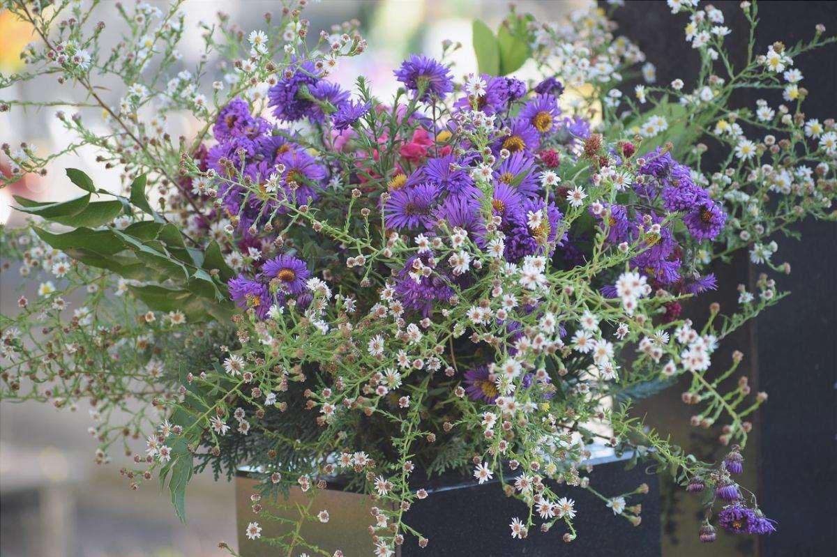 Scegliere fiori di lunga durata per i cimiteri