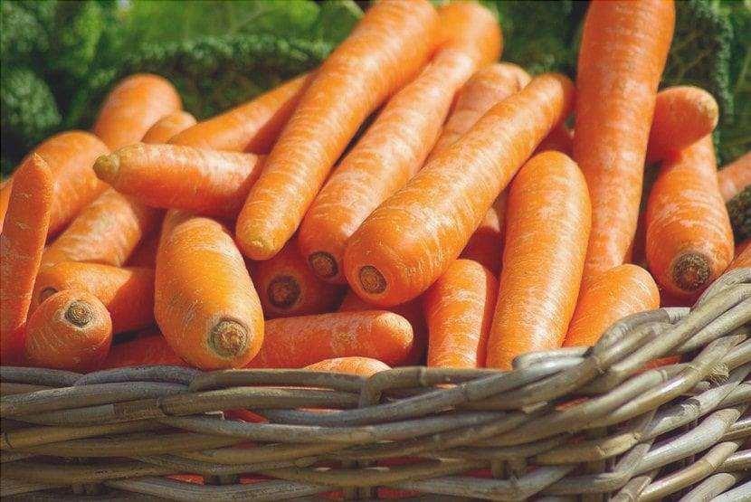 Le carote sono molto sane