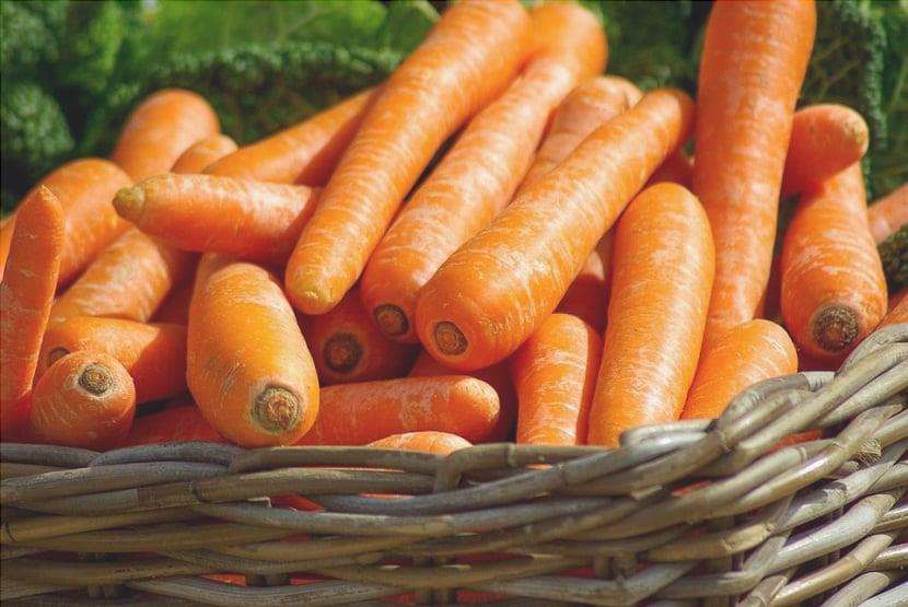 Tutto quello che devi sapere sulle carote