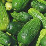 cucumbers 849269 960 720