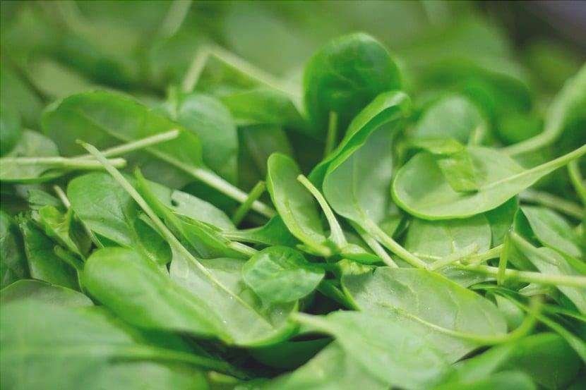 Gli spinaci sono una delle piante erbacee che hanno la capacità di essere annuali.