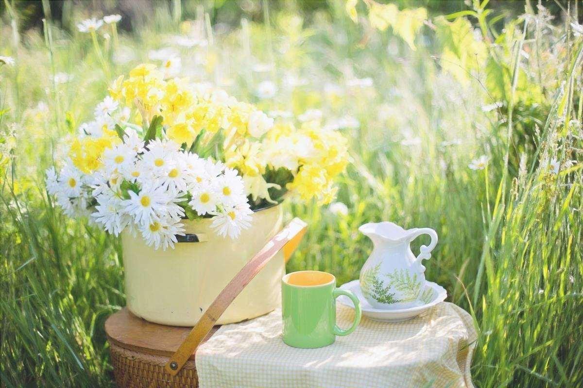 I fiori su un tavolo in un giardino romantico sono bellissimi