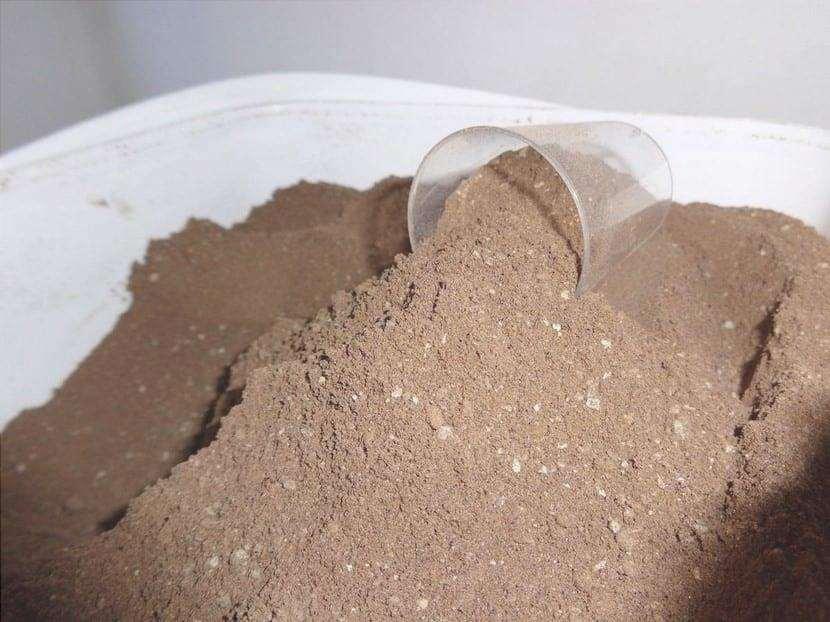 Il fertilizzante in polvere di guano è molto buono per Teucrium fruticans