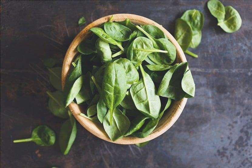 Il nome scientifico degli spinaci è Spinacia oleracea.
