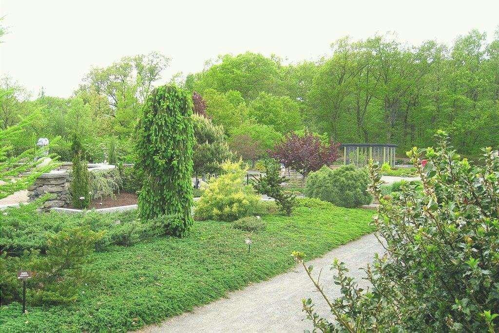 Il giardino ha bisogno di cure tutto l'anno