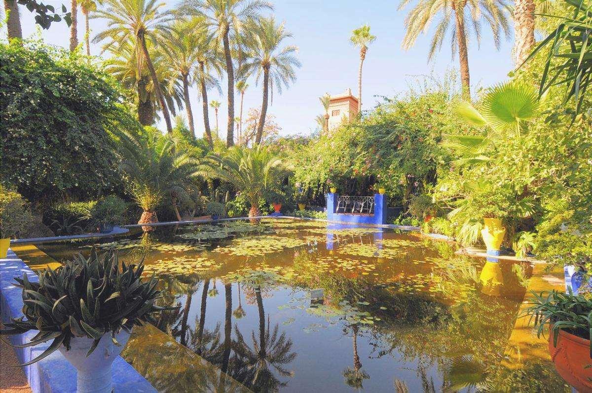 Il Giardino Majorelle si trova in Marocco, ed è uno dei giardini più belli del mondo.