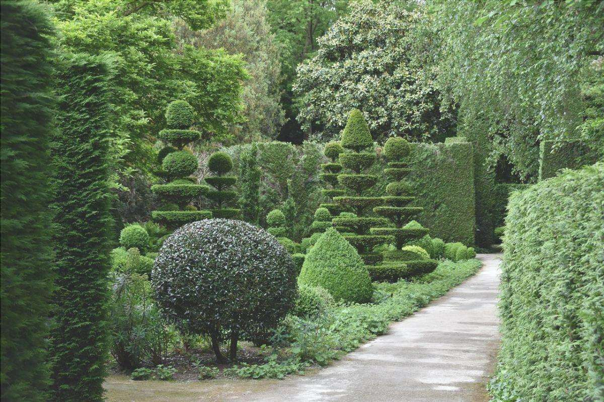 Godetevi il vostro giardino anche in inverno