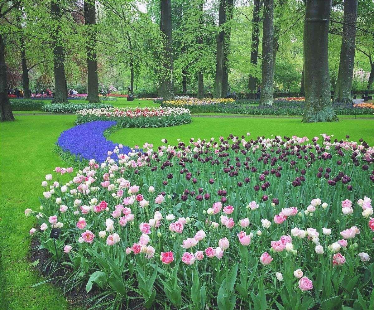 I giardini Keukenhof sono nei Paesi Bassi