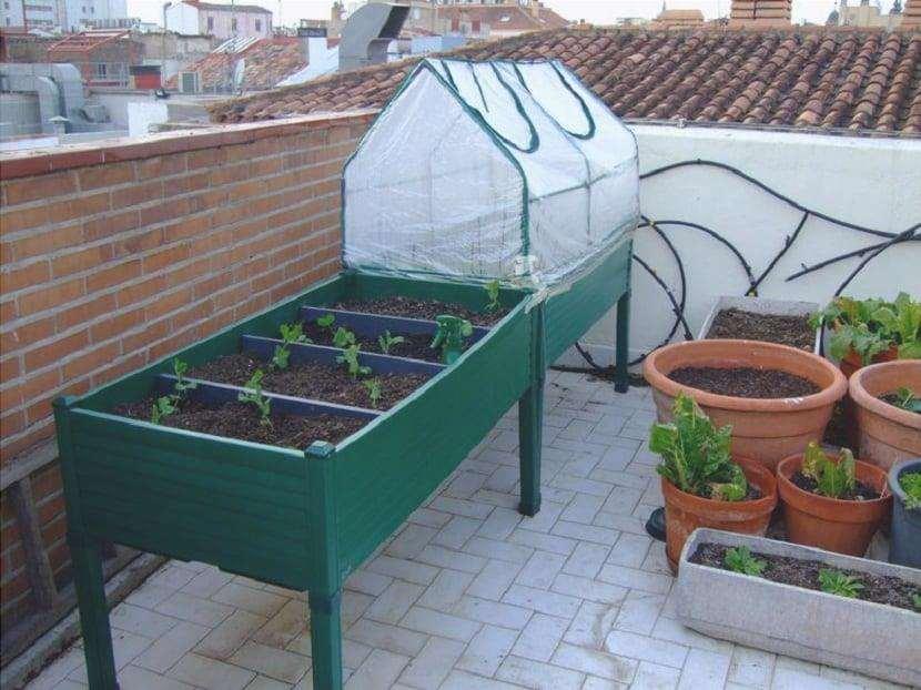 tavolo di coltivazione idroponica