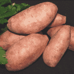 patata dulce al lado del perejil 1