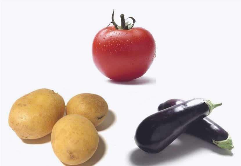 patata pomodoro e melanzana