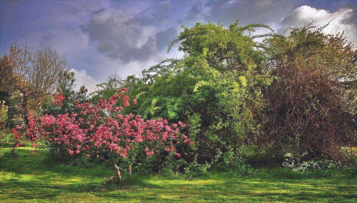 In un giardino romantico è fondamentale avere uno spazio intimo.