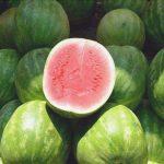sandia o melon de agua